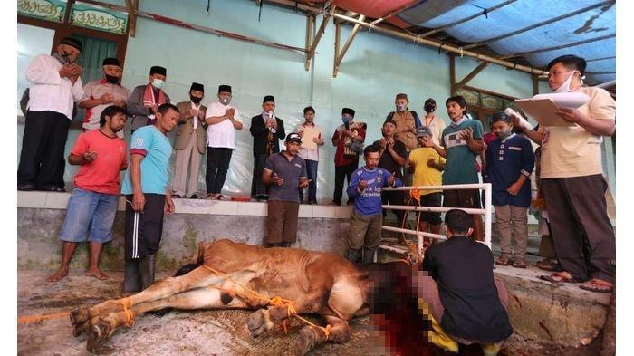 Saksikan Penyembelihan Hewan Kurban, Wakil Wali Kota Bandung Apresiasi Panitia di Masjid At Taqwa