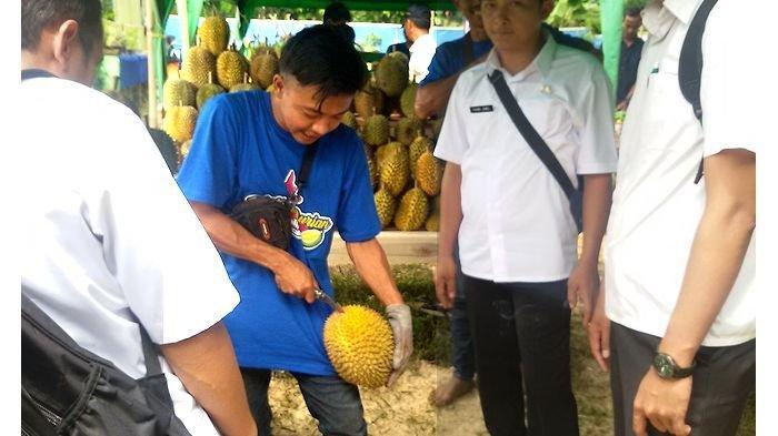 Sandi Mantan TKI yang Kini Jadi Bos Durian, Berkah dari Adanya Festival Durian