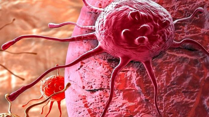 human papilloma virus penyebab kanker serviks troieni de vierme