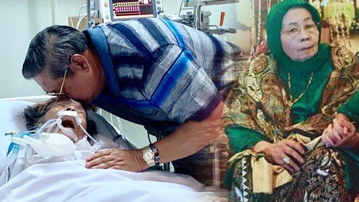 Siti Habibah Tergolek Lemah di Kasur Ruang ICU, SBY Cium Kening Ibunya dan Mohon Doa Kesembuhan