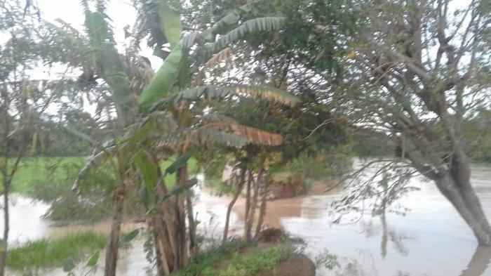 Tanggul Sungai Cilamaya Jebol, Pemukiman dan Sawah Warga Tergenang Air
