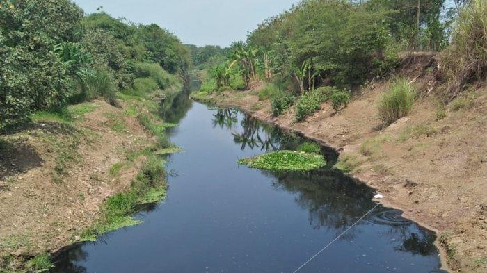 Sungai Cilamaya Hitam dan Bau, Warga di Karawang dan Subang Berharap Ridwan Kamil Mengatasinya