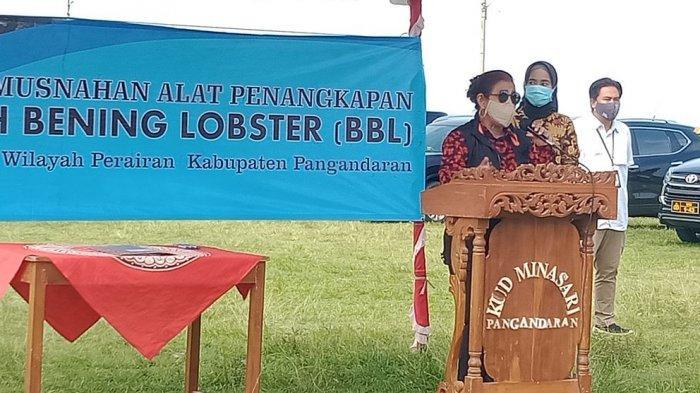 Susi Pudjiastuti Senang Nelayan Kompak Jaga Bibit Lobster: yang Dukung Penangkapan, Tenggelamkan!