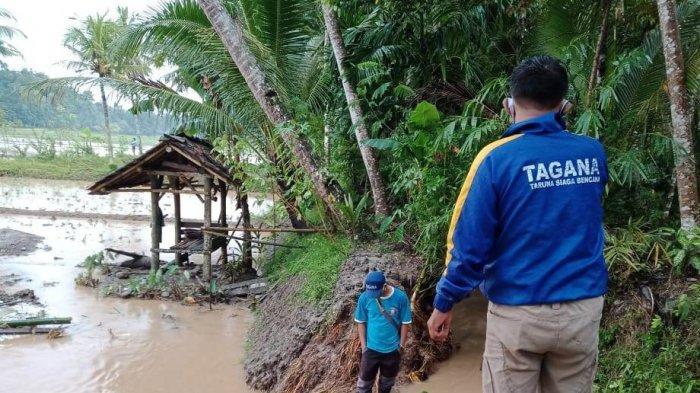 Tanggul Kadu Pugur Jebol, 15 Hektare Sawah di Banjaranyar Kabupaten Ciamis Terancam Tergenang