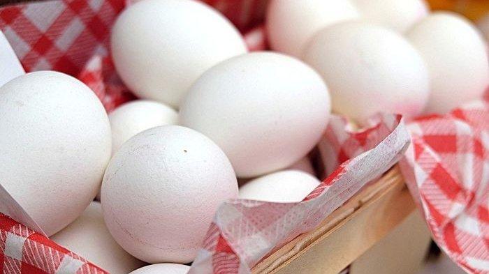 Telur ayam bermanfaat untuk tubuh