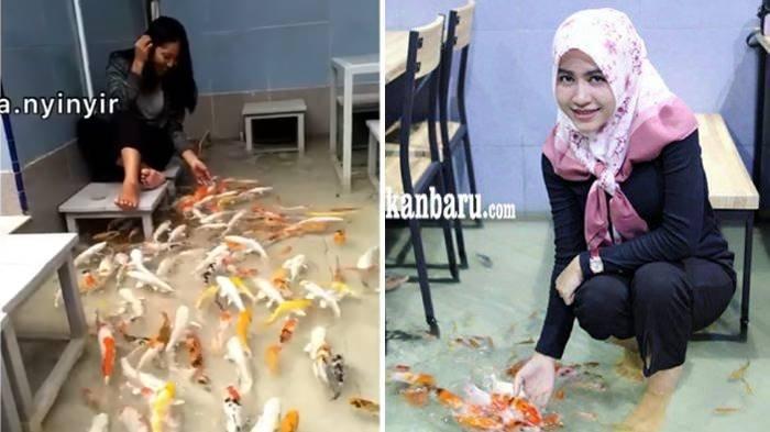 Viral Video Tempat Makan Unik, Lantainya Kolam Penuh Ikan Koi, Ternyata di Sini Lokasinya