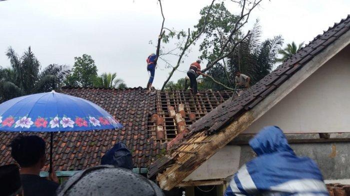 Tiga Rumah di Ciamis Rusak, Ditimpa Pohon Tumbang Saat Hujan Deras Melanda