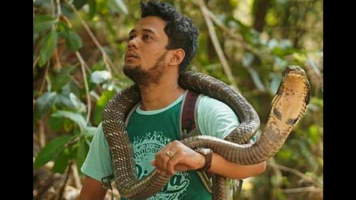 Momen ular king kobra joget disentuh Panji Petualang.