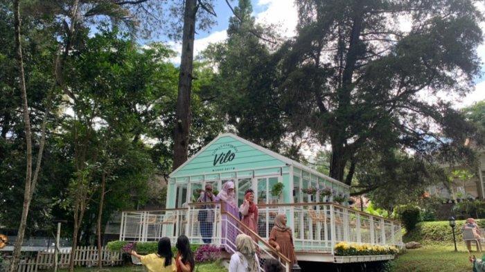 Vilo Gelato, Wisata Kuliner Baru di Bandung yang Instagramable, Bersantai di Tengah Pohon Pinus
