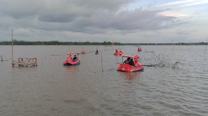 Di Areal Sawah yang Banjir, Warga Desa Paledah Pangandaran Ngabuburit Sambil Main Sepeda Gowes