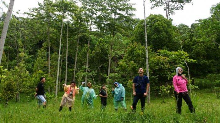 Yuk Trekking Seru ke Hutan Pinus The Lodge Maribaya Lembang, Sejuk dan Segar