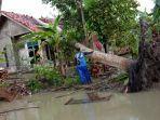 19-rumah-rusak-tertimpa-pohon-tumbang-di-pangandaran-hujan-deras-angin-kencang-menggelegar.jpg