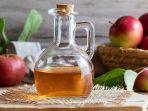 apple-cider-vinegar-cuka-apel.jpg