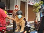 aril-dan-anjing-asuhannya-joy-bertemu-dengan-warga-ciamis-jumat-1222021.jpg
