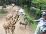bantuan-yang-didapatkan-bandung-zoological-garden-bazoga-alias-kebun-binatang-bandung.jpg