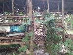 evakuasi-sarang-tawon-indramayu-widasari.jpg