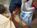 goni-34-saat-selamatkan-gabah-padi-miliknya-yang-terendam-banjir-kamis-912020.jpg