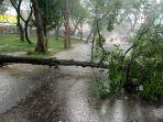 hujan-deras-dan-angin-kencang-pohon-tumbang-melintang-ke-jalan-di-majalengka.jpg