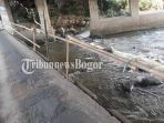 jembatan-goja-di-cibanon-kecamatan-sukaraja-kabupaten-bogor_20180501_223425.jpg