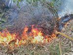 kebakaran-lahan-sanghiang-pancanaka-hill-cimahi_20180829_170808.jpg