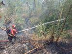kebun-bambu-di-cipameumpeuk-sumedang-kebakaran.jpg