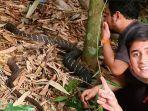 king-kobra-garaga-cegat-panji-petualang-dan-alshad-ahmad.jpg