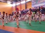 kualifikasi-tarung-drajat-pon-jabar_20151022_162411.jpg