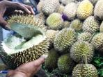 kulit-durian_20160603_091733.jpg