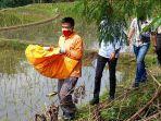 lagi-betulkan-irigasi-warga-temukan-mayat-bayi-perempuan-di-cisayong-kabupaten-tasikmalaya.jpg