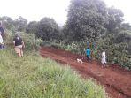 lahan-hijau-yang-diratakan-untuk-membangun-jalan-di-desa-pagerwangi_20171125_193707.jpg