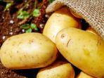 manfaat-kentang-untuk-kecantikan.jpg