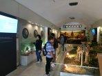 museum-manusia-purba-sangiran_20181102_010836.jpg