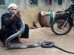 oh-king-cobra.jpg