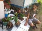 orderan-sepi-teknisi-ac-di-ciamis-ini-banting-setir-jadi-pengrajin-bonsai-kelapa.jpg