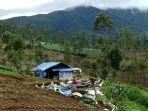 para-keluarga-yang-memilih-tinggal-di-gubuk-tanpa-listrik-di-dekat-hutan-terlarang-demi-kehidupan-c.jpg