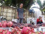 pedagang-buah-musiman.jpg