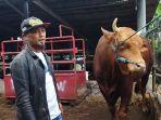 pedagang-sapi-peternak-sapi-lembang.jpg