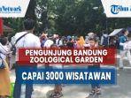 pengunjung-bandung-zoological-garden-bazoga-membludak-capai-3000-wisatawan.jpg