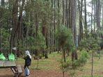 pengunjung-beristirahat-di-bawah-pohon-di-taman-hutan-rakyat.jpg
