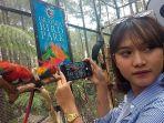 pengunjung-foto-burung-paruh-bengkok-di-grafika-cikole_20180925_163449.jpg