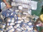 penjaga-pantai-india-icg-menggagalkan-penyelundupan-heroin-seberat-1500-kilogram_20170731_211245.jpg