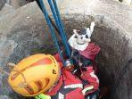 penyelamatan-kucing-yang-jatuh-ke-dalam-sumur-di-kota-cimahi.jpg
