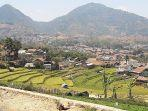 persawahan-di-desa-kutamandiri-kecamatan-tanjungsari-sumedang-senin-992019.jpg