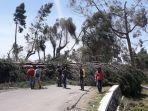 pohon-tumbang-akibat-angin-kencang-menutup-jalur-pangalengan-kertasari.jpg
