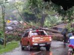 pohon-tumbang-tutupi-jalan-di-cikidang-kabupaten-sukabumi-akibat-hujan-deras-angin-kencang.jpg