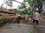 pohon-tumbang-tutupi-jalan-di-cikidang-kabupaten-sukabumi.jpg