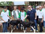 rektor-ipb-prof-dr-arif-satria-serahkan-bantuan-anakan-sapi-di-garut.jpg