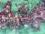 rohingya-twitterkenroth_20170905_061813.jpg