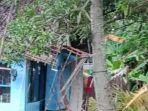 rumah-sriyatidi-sindangjaya-pangandaran-tertimpa-pohon-kelapa-tumbang.jpg