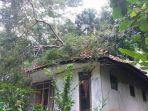 rumah-tertimpa-pohon-di-pamarican-ciamis.jpg